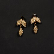 Earrings20