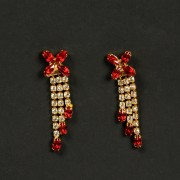 Earrings19